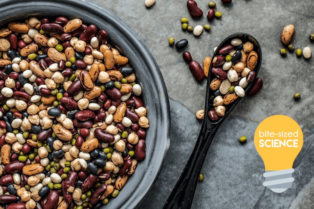 Die biologische Wertigkeit eines Proteins trifft Aussagen darüber, wie effizient ein Nahrungsprotein in körpereigenes Protein umgewandelt werden kann - sie ist also ein Mass für die Qualität des Proteins.